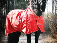 Hästtäcke - regntäcke för häst, 600D, halvhals, 100 gr fyllning, rött
