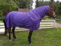 Hästtäcke - regntäcke 600D med avtagbar hals, 100 gr fyllning, lila