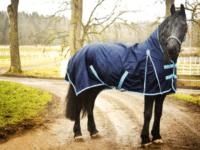 Hästtäcke - regntäcke häst, 1200D, halvhals, 100gr fyllning, marinblått med ljusblått kantband