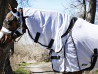 Hästtäcke - flugtäcke häst, med helhals, vitt