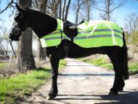 hästtäcke - reflexridtäcke, sidan