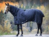 Vintertäcke 600D med helhals svart - köp hästtäcken online