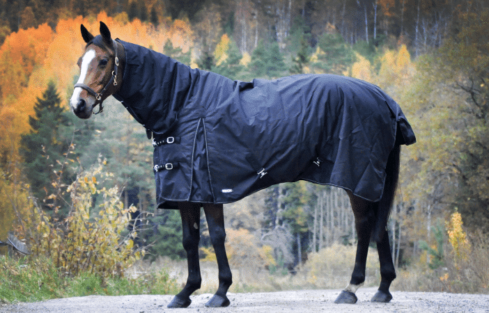 vinter-hel-600-svart2