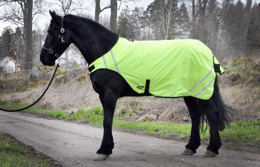 Hästtäcke - arbetstäcke för häst