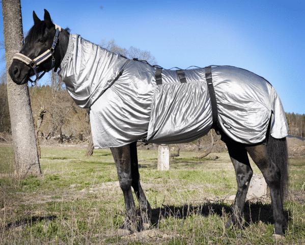 Eksemtäcke för häst med knotteksem