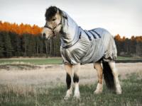 Hästtäcke - eksemtäcke för knotteksem med juverskydd, silvergrått