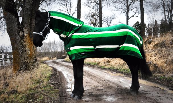 Hästtäcke - fleecetäcke, helhals, grönt