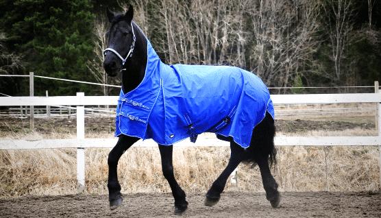 Hästtäcke - regntäcke halvhals utan fyllning, blå
