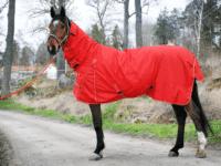 Hästtäcke - regntäcke för häst, 600D, fast helhals, 100 gr fyllning, rött