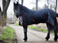 Hästtäcke - stalltäcke med halvhals, 300gr, svart