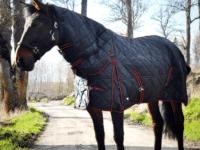Hästtäcke - stalltäcke helhals 300gr, svart, framifrån