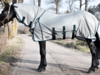 Hästtäcke - flugtäcke med UV-skydd, fast helhals, silverfärgat med blått kantband