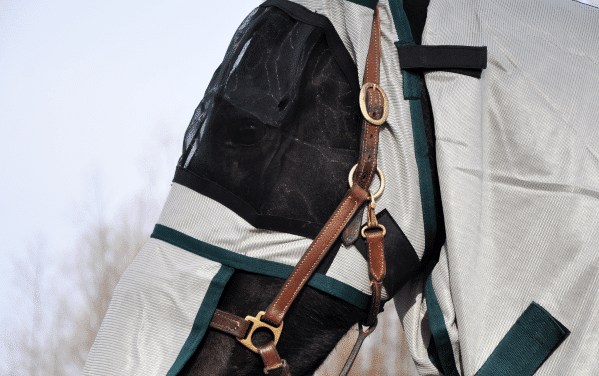 Flugtäcke för häst med UV-skydd, huvud
