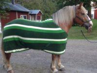 Hästtäcke - fleecetäcke för grova hästar, randig gröna nyanser