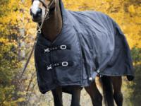 Hästtäcke - vintertäcke 600D med halvhals, svart