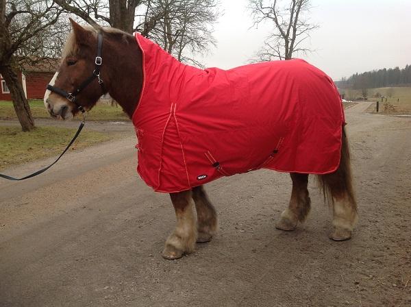 Hästtäcke - regntäcke för grova hästar 600D med halvhals, 100gr fyllning, rött