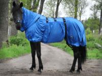 Hästtäcke - eksemtäcke för knotteksem med dragkedja fram, blå