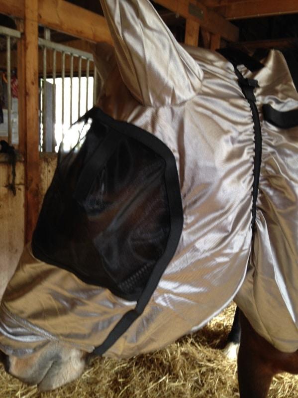 Eksemhuva för häst med öron - Huva till eksemtäcke, silvergrå