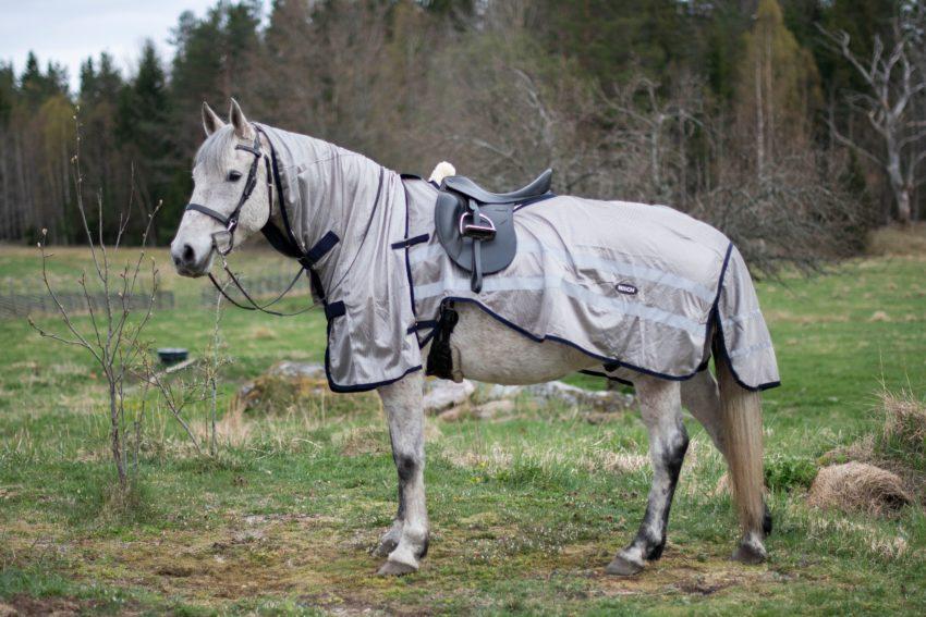 Ridflugtäcke för häst i två delar från vänster