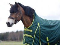Hästtäcke - regntäcke häst, 1200D, med halvhals utan fyllning, grönt