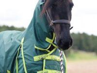 Hästtäcke - regntäcke 1200D fast helhals utan fyllning grönt, framsidan