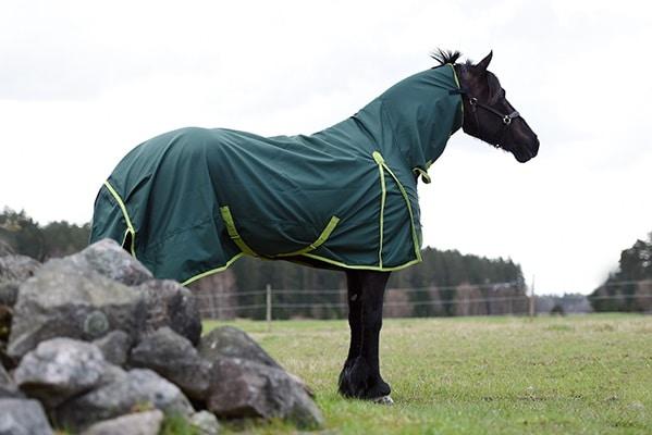 Hästtäcke - regntäcke med helhals på en häst, grönt, sida