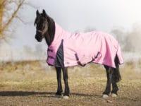 Rosa hästtäcke 600D med halvhals och 200g fyllning
