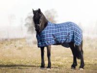 Hästtäcke - våffeltäcke blått med normal hals