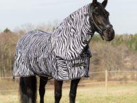 Zebratäcke avtagbar hals- Bild Tilde Wrangell